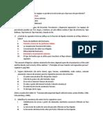 CUESTIONARIO LIXIVIACIÓN.docx