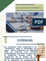 6. Evidencias y Procedimientos de auditoria