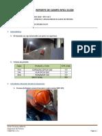 Reporte de Campo Nº01-21228