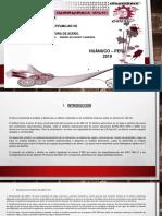 Presentación2 diseño cdde acero y.pdf