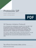Edson Ramos Protocolo Sip