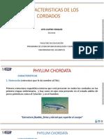 CARACTERISTICAS_DE_LOS_CORDADOS.pdf