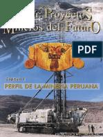 Proyectos Mineros Del Futuro-convertido