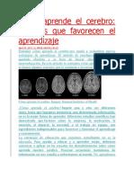 Cómo aprende el cerebro.docx