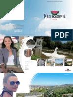 Folleto Dulce Horizonte.pdf