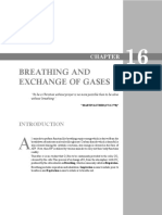 Breathing Exchange of Gases