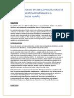 Bioprospeccion de Bacterias Productoras de Polihidroxialcanoatos