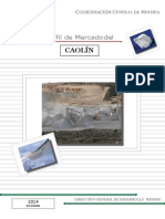 pm_caolin_2014-convertido.docx