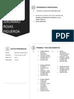 Curriculum Jeronimo Rojas Figueroa