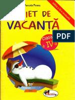Caiet Vacanta IV