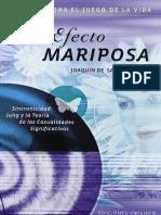 ElefectomariposaJoaqundeSaintAymour(1)