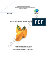 Tdap Report on Mangoes