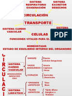 Hemogram A