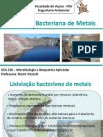 Aula_6_Lixiviacao_bacteriana_metais_DAM.ppt