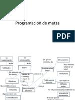 PROGRAMACION DE METAS