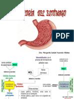 Fisiología Gastrica Miha