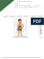 Sistema Digestivo y Sus Partes Animado - Buscar Con Google