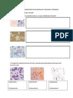 Guía Para Alumnos de Bacteriología