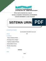 Monografia de Sistema Urinario. Adulto Mayor