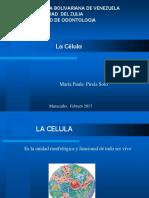Fisiologia1 Paula