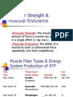 Muscular Strength & Muscular Endurance