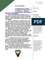 Processes Essay Example