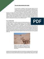 FALLAS GEOLOGICAS EN TACNA.docx