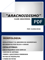 Aracnoidismo y Escorpionismo 2