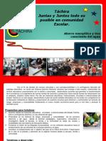 Plan de Acción Estadal (1) (1)