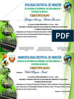 Certificado Expo Vivero
