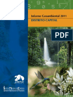 Informe_Geoambiental_DttoCapital