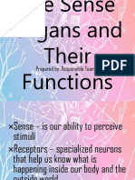 The Sense Organs and Their Functions