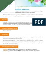 gusanos_y_chanchitos.pdf