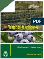 frut_510_HD arándanos.pdf