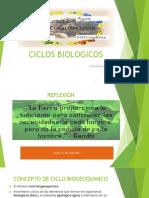 CICLOS BIOGEOQUIMICOS ECOLOGIA