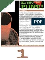El teu punt Cartells i plafons 2010