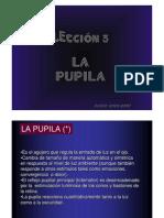 03_LA_PUPILA
