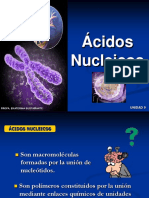CLASE NUCLEICOS COMPLETA.ppt