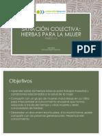 Sanacion Colectiva Hierbas Para La Mujer Universidad Popular Nov 8 2014