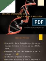 Efectos Biologicos de Rad Ionizante