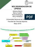 PRESENTACION FINAL DEGRADACIÓN DE  LIPIDOS
