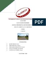 IMPACTO AMBIENTAL CARRETERA - CAMINO.pdf
