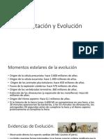 5. Adaptación y Evolución