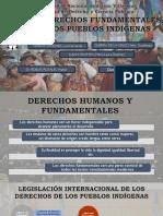 Derechos Pueblos Indígenas en Perú
