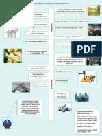 Infografia Peer Group Admon_fin 2019 Sem_A Grupo 02 (1)