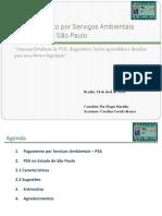 YURI - Slides - Planeta Verde - PSA - 17.04.14