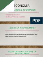 Incertidumbre e Informacion