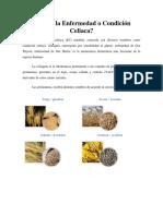 Enfermedad o Condición Celiaca