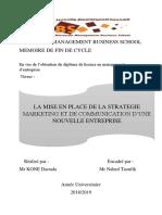 La Mise en Place de La Stratégie Marketing Et de Communication d