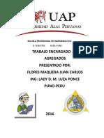 Juan Carlos Flores Expocicion